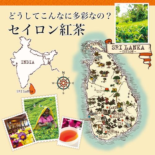 世界の紅茶-3